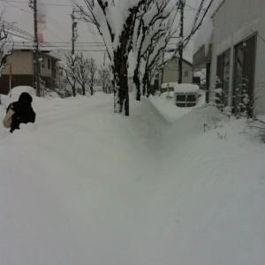 松本営業所の雪の様子